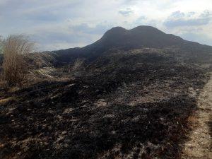Aliansi Peduli Lingkungan Soroti Tumpukan Menggunung Diduga Limbah B3 di Mojokerto