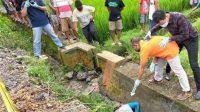 Terduga Pembunuh Sopir Grab asal Pandaan Ditangkap, Diduga Pembunuhan Bermotif Ekonomi